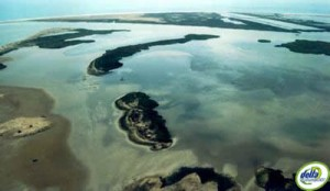 Desenvocadura delta de l'Ebre