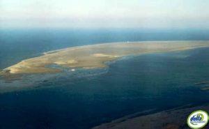 El fangar delta de l'Ebre