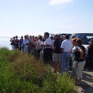Grups i empreses al delta de l'Ebre